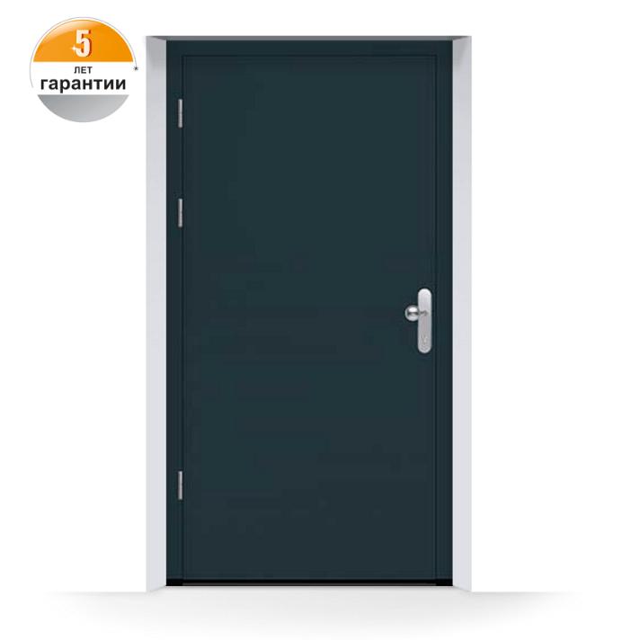 dveri-1-sin